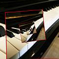 Thumbnail of Sebastien Perez-Duarte's Spiral Piano